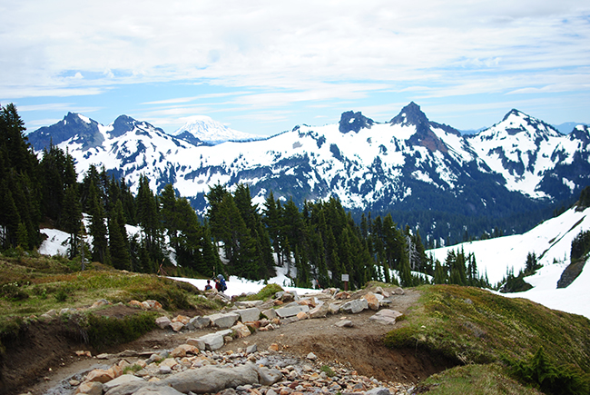 Skyline Trail / Hike the PNW