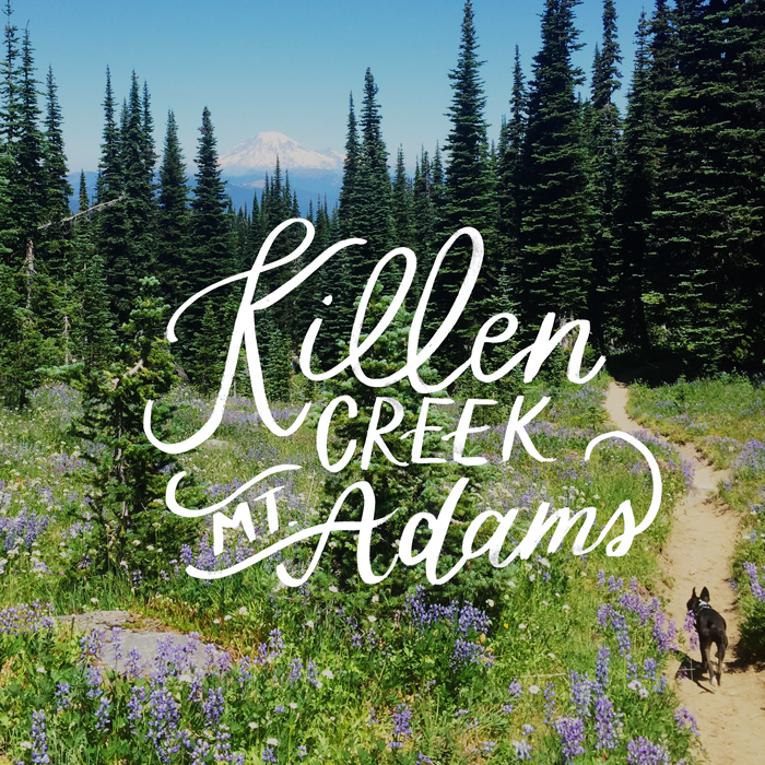 Killen Creek, Mt. Adams // Hike the PNW
