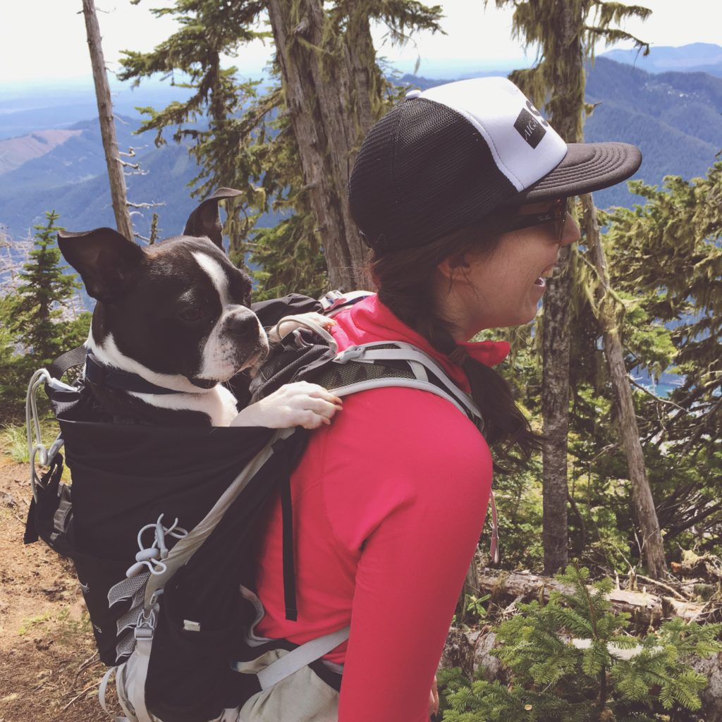 Mt. Rose Hike with Winston
