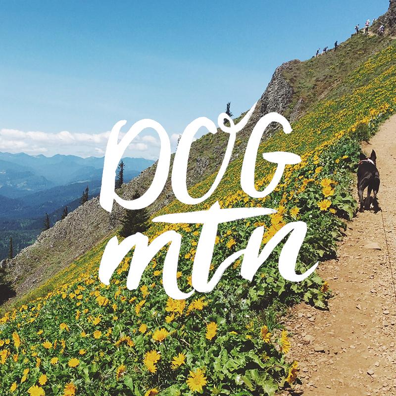 Dog Mountain, Columbia Gorge